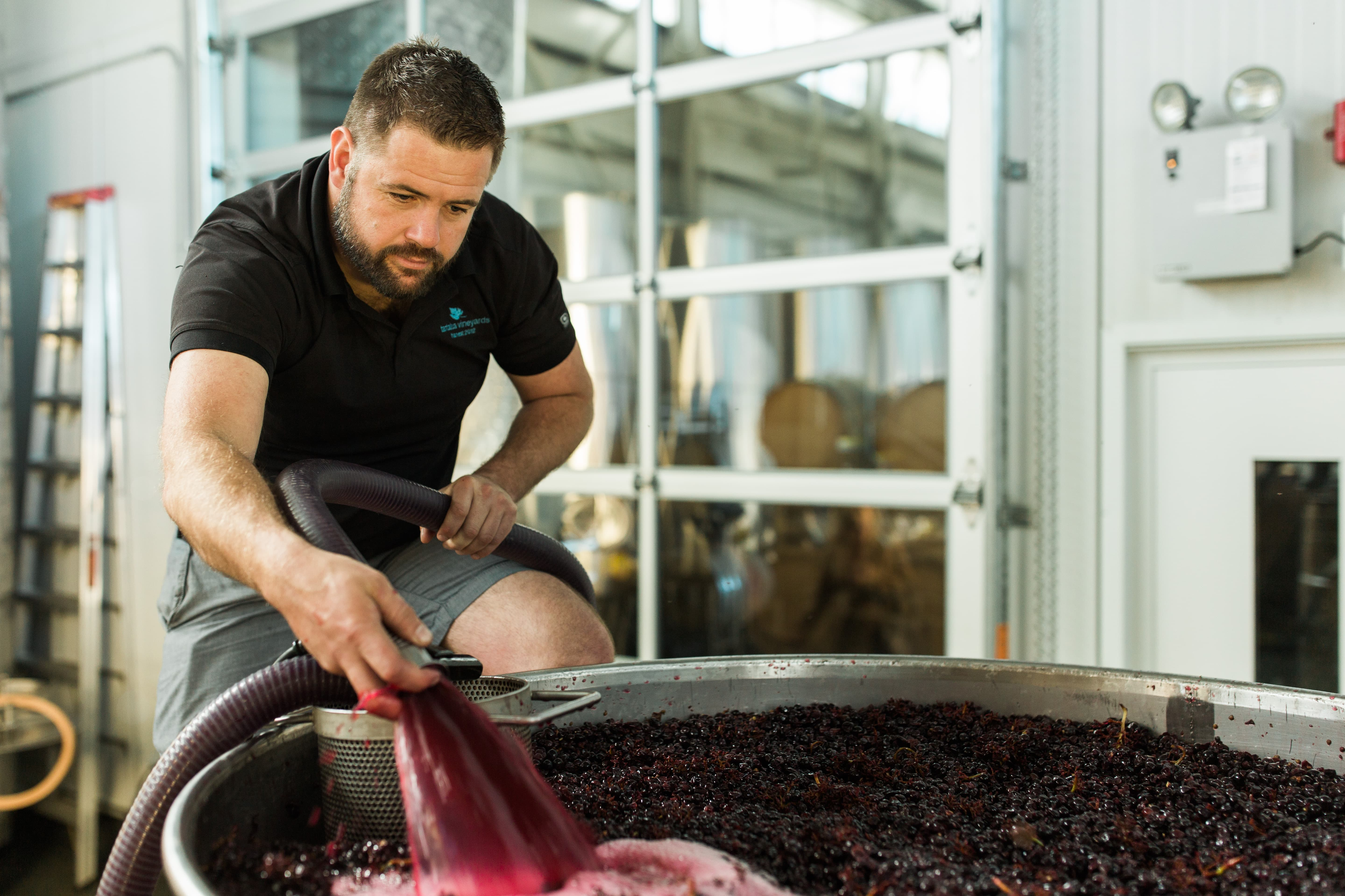 Tantalus winemaker David Paterson, courtesy BC Wine Institute