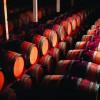 PW_Winery_Barrels.jpg